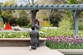 Denver Botanical Gardens Denver Botanic Gardens Archives Focus