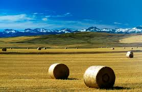 Montana landscapes images Located in three forks mt grey cliffs ranch jpg