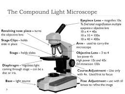 compound light microscope uses microscope parts ppt video online download