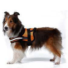 compare prices on mesh service dog vest online shopping buy low