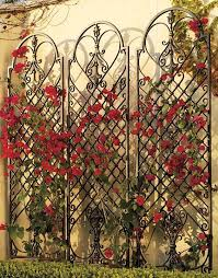 our versatile scroll wall trellis is an artful display and the