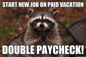 Raccoon Meme - the best of the evil plotting raccoon meme