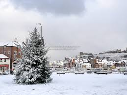 whitby christmas tree christmas cards whitby photography