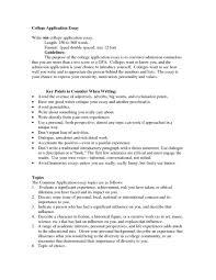 sample essay structure essay format college essay format