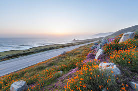 toyota in california miller toyota of anaheim best scenic roads in california