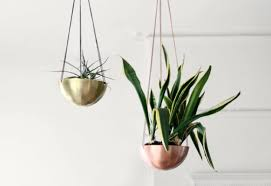 6 sculptural hanging planters u2013 space as art commercial interior