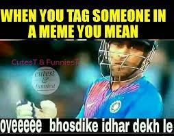 Crickets Meme - best 25 crickets meme ideas on pinterest cricket cricket