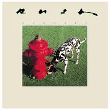 dog photo album to the dogs best album covers featuring pooches