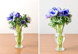 Flowers In A Vase Images Living Well 10 Secrets For Extending The Life Of Cut Flowers