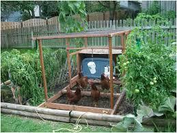 backyard vegetable garden container ideas garden ideas