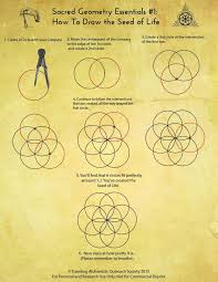 best 25 seed of life ideas on pinterest sacred geometry sacred