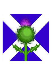 Bonnie Flag Clipart Scottish Thistle And Flag