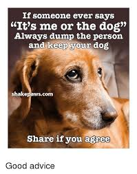 Animal Advice Meme - if someone ever says it s me or the dog always dump the person and