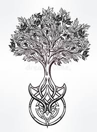 celtic tree of illustration stock vector illustration of