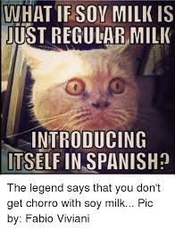 Spanish Word Of The Day Meme - what if soy milk is ustregularmilk introducing itself in spanish