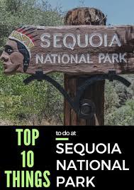best 25 sequoia national park ideas on sequoia