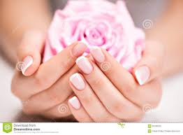 beautiful woman u0027s nails with french manicure and rose stock photo