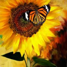 sunflower and butterfly painting painting by lourry legarde