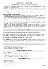Accounting Controller Resume Financial Controller Cv