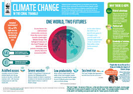 Coral Reef Map Of The World by Infographic Climate Change In The Coral Triangle Wwf