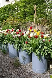 dustbins as plant pots plant pot design ideas houseandgarden co uk