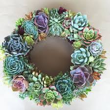 succulent wreath succulent wreath the colors and textures of a wreath are so
