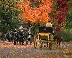 colonial williamsburg offers virginia residents and seniors