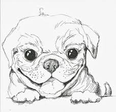patsy the pug sketch art illustration drawing pug dog