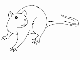 coloring page of a rat rat 4 coloring page free printable pages incredible rats olegratiy