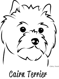 cairn terrier drawings google search cairn crazy pinterest