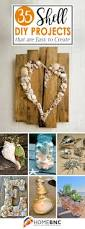 35 best diy shell projects ideas and designs for 2017