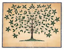 Tree Of Life by Hannah Cohoon Wikipedia