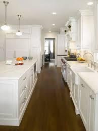 All White Kitchen Designs All White Kitchen Houzz