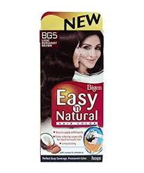 Light Burgundy Hair Buy Bigen Easy N Natural Light Burgundy Brown Bg5 Online At Low