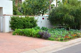 Vegetable Garden Front Yard by Vegetable Gardens In Unexpected Places Ramblings From A Desert