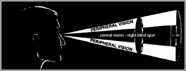 Sudden Blind Spot In Both Eyes Principles And Problems Of Vision