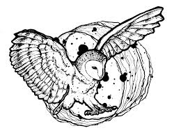 owl wings deployed animal coloring pages for kids to print u0026 color