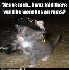 Rum Meme - 39 xcuse meh i wuz told there wuld be wenches an rums i can