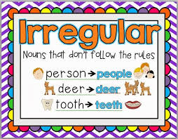 best 25 irregular plurals ideas on pinterest irregular nouns