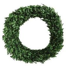 boxwood wreath preserved boxwood leaves wreath 21 25 smith hawken target