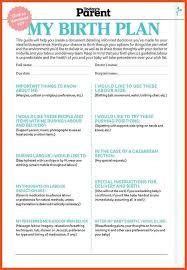 8 9 birth plan samples titleletter