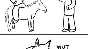 High Horse Meme - get off your high horse imgur