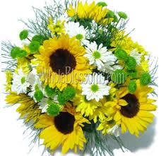 Sunflower Centerpiece Wholesale Sunflowers Buy Bulk Sunflowers Online Sunflowers