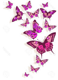 hd butterflies design stock vector butterfly flowers drawing