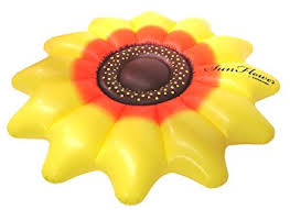sunflower pictures swimline sunflower pool float toys