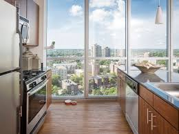 apartments for rent near university of minnesota twin cities