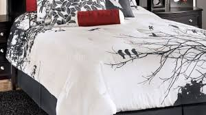 Best 25 Red And Black by Incredible Best 25 Cheetah Print Bedding Ideas On Pinterest