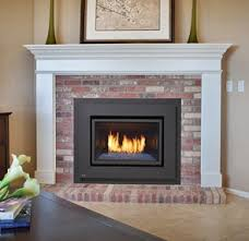 Fireplace Insert Screen by The Best Gas Fireplace Inserts Of 2017 A Comprehensive Guide