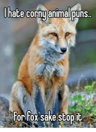 Pun Meme - l hate corny animal puns for fox sake stop it meme on me me