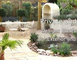Mediterranean Gardens Ideas Garden Plants Tropical Plants Mediterranean Plants